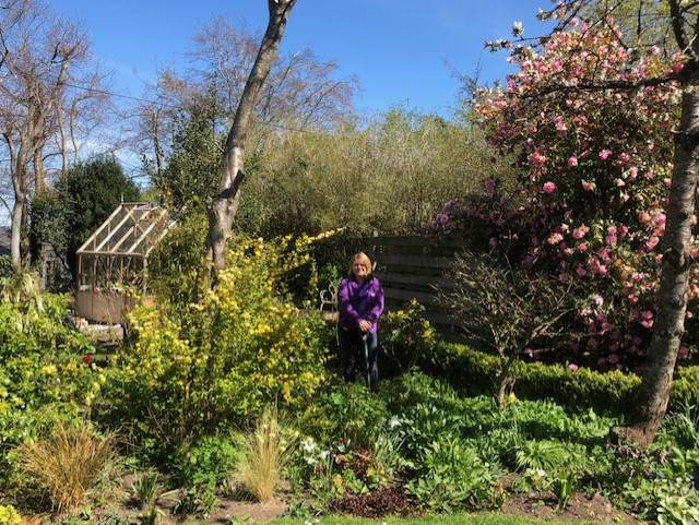 Staff Blog – Gardening in Lockdown